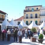 FeriaSalud_2010 (19)