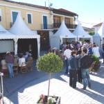 FeriaSalud_2010 (20)