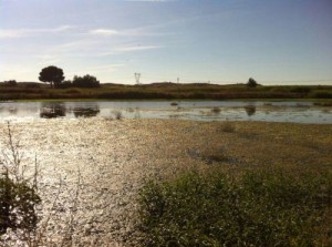 Inundaciones3